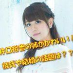 井口裕香の姉がかわいいと話題に?絵がうまい!彼氏との結婚は?