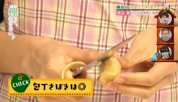 原田葵料理4