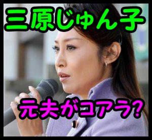 三原じゅん子3
